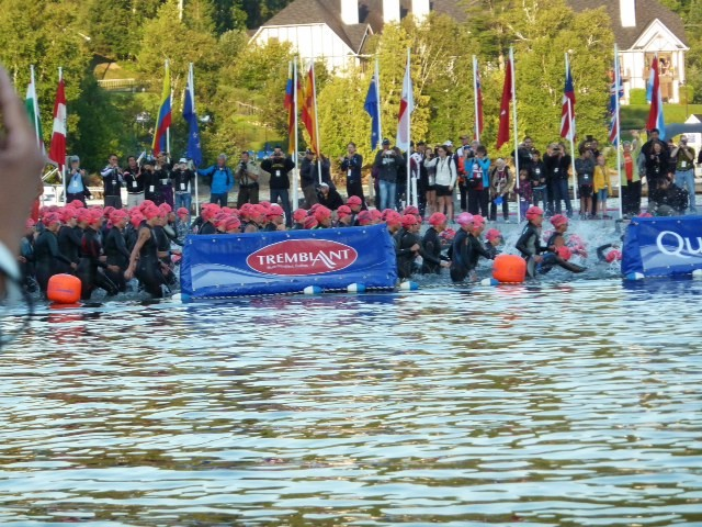 Approach Open Water Swimming with Confidence